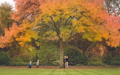 London Outdoor Photographer   Marylebone