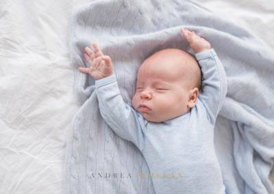 Andrea Whelan Photography-6