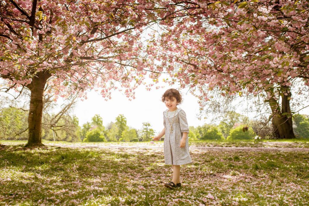 Blossom Trees Greenwich Park